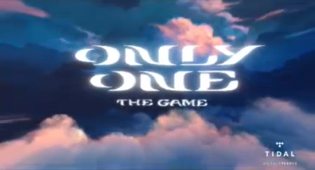 only one game screenshot 7
